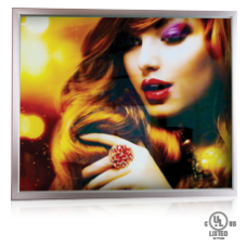 "LED Backlight Printed Photo Panel 22"" x 28"" (No Frame)"