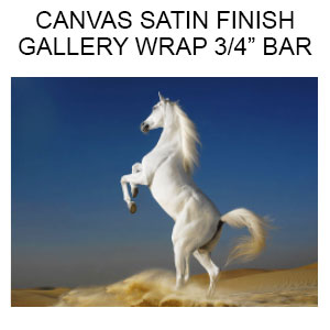 1_Canvas Satin Finish  Gallery Wrapped on 3/4 inch Bars  (Inches)