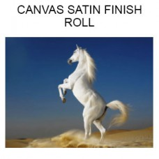 Canvas Satin Finish  Roll  (Inches)