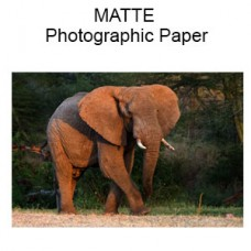 MATTE Custom Size - Premium Professional Quality Photographs (Inches)