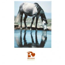 "Bison® Ceramic Tile, Gloss, 7.875"" x 9.8125"" x .25"""