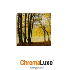 "ChromaLuxe® Natural Wood Sublimation Plaque Panel, 8"" x 8"" x 0.625"", Clear Matte on Maple."